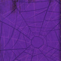 Bo Bunny Press - Fright Night Collection - 12x12 Paper - Spider Web