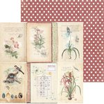 Bo Bunny - Garden Journal Collection - 12 x 12 Double Sided Paper - Garden Journal