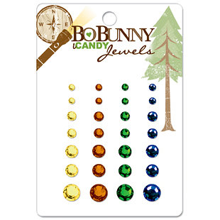 Bo Bunny Press - Roughin' It Collection - I Candy Jewels - Roughin' It, CLEARANCE