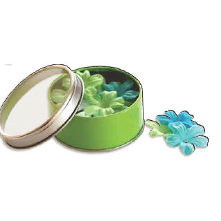 Bo Bunny Press - All Stuck Up - Magnetic Storage Container - Flowers - Apple Green