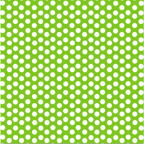 Canvas Corp Brights Collection 12 X 12 Paper Lime Green And