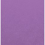 Carta Bella Paper - 12 x 12 Cardstock - Shimmer - Grape