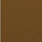 Carta Bella Paper - 12 x 12 Cardstock - Shimmer - Chocolate