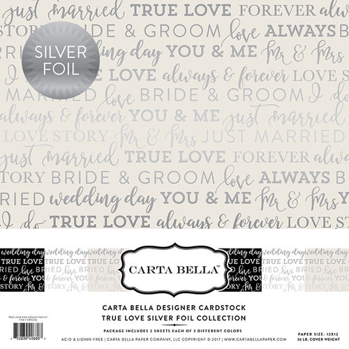 Carta Bella Paper - True Love Silver Foil Collection - 12 x 12 Collection Kit