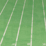 Carolee's Creations - Adornit - Football Collection - 12 x 12 Paper - Goal Line