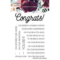 Colorado Craft Company - Savvy Sentiments Collection - Clear Photopolymer Stamps - Congrats Everything