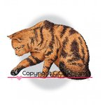 CC Designs - DoveArt Studio Collection - Cling Mounted Rubber Stamps - Curious Kitty