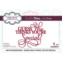 Creative Expressions - Craft Dies - Mini Expressions - Guess Who Thinks You're Special