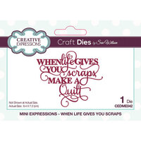 Creative Expressions - Mini Expressions Collection - Dies - When Life Gives You Scraps