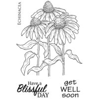 Creative Expressions - Woodware Clear Singles - Clear Photopolymer Stamps - Echinacea