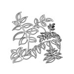 The Crafter's Workshop - 6 x 6 Doodling Templates - Mini Vines