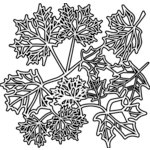 The Crafter's Workshop - 12 x 12 Doodling Templates - Maple Leaves