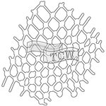 The Crafters Workshop - Balzer Bits - Doodling Template - Netting Bit