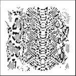 The Crafter's Workshop - 12 x 12 Doodling Templates - Snakeskin
