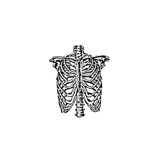 The Crafter's Workshop - 6 x 6 Doodling Templates - Mini Ribcage