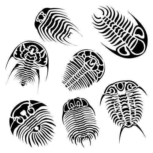 The Crafter's Workshop - 12 x 12 Doodling Template - Trilobites