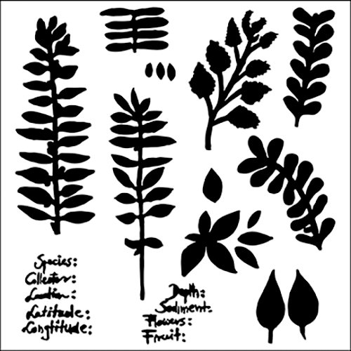 The Crafter's Workshop - 12 x 12 Doodling Templates - Herbarium