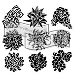 The Crafters Workshop - 6 x 6 Doodling Templates - Mini Pretty Succulents