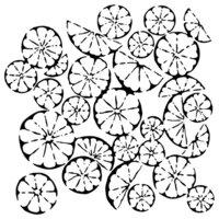 The Crafter's Workshop - 6 x 6 Stencils - Mini Citrus Montage