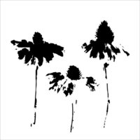 The Crafter's Workshop - 6 x 6 Stencils - Cone Flowers