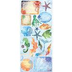 Creative Imaginations - Oceana Collection - Cardstock Stickers - Oceana