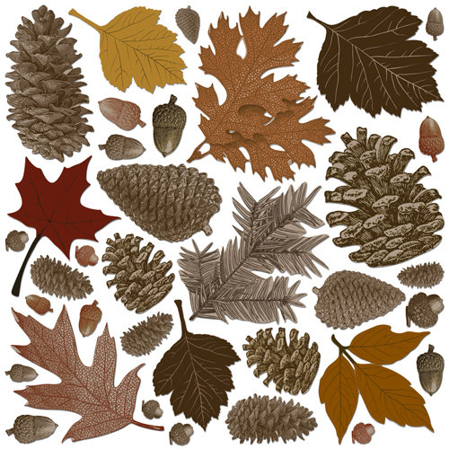 Creative Imaginations - Great Outdoors Collection - Die Cut Pieces - Fall Leaves