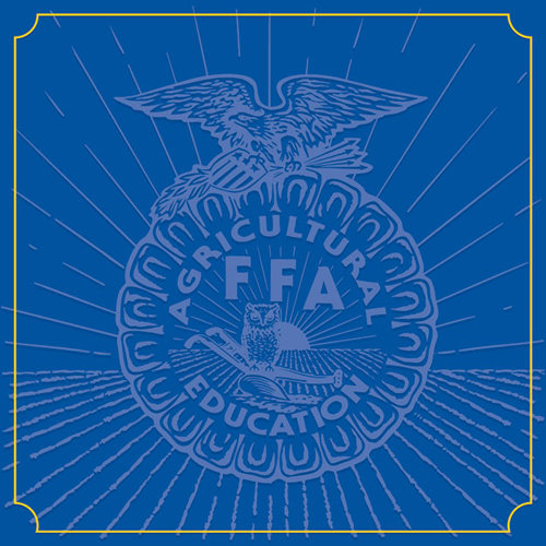 Creative Imaginations Ffa Convention Collection 12 X 12 Paper