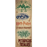 Creative Imaginations - Harry Potter Collection - Cardstock Stickers - Spells