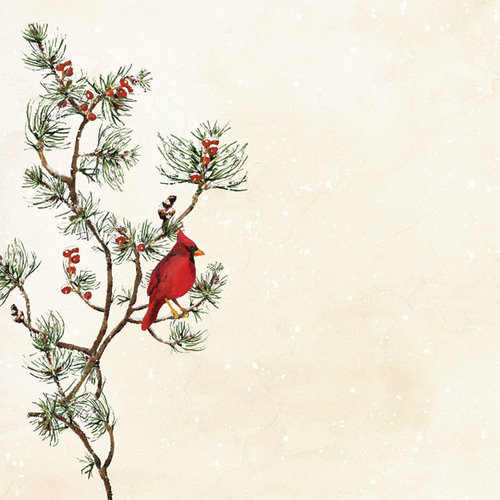 Creative Imaginations - Holiday Berry Collection - Christmas - 12 x 12 Paper with Varnish Accents - Red Cardinal