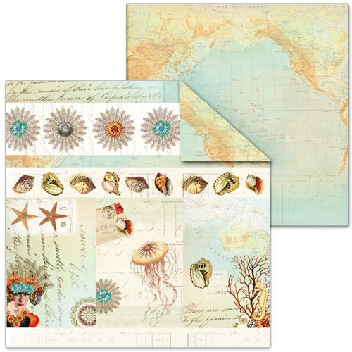 Splash of Color - Shell Seeker Collection - 12 x 12 Double Sided Paper - Shell Collage