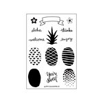 Concord and 9th - Clear Acrylic Stamps - Pop Art Pineapple