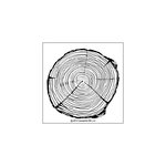 Concord and 9th - Clear Photopolymer Stamps - Tree Ring