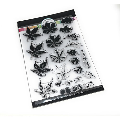 Catherine Pooler Designs - Clear Photopolymer Stamps - Hello Autumn