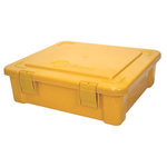 Creative Options - Vineyard Collection - Album and Craft Tub - Gold, CLEARANCE
