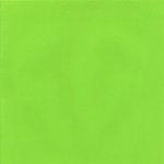 Doodlebug Design - Crushed Velvet 12x12 Cardstock - Limeade, CLEARANCE