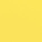 Doodlebug Design - 12 x 12 Textured Cardstock - Lemon