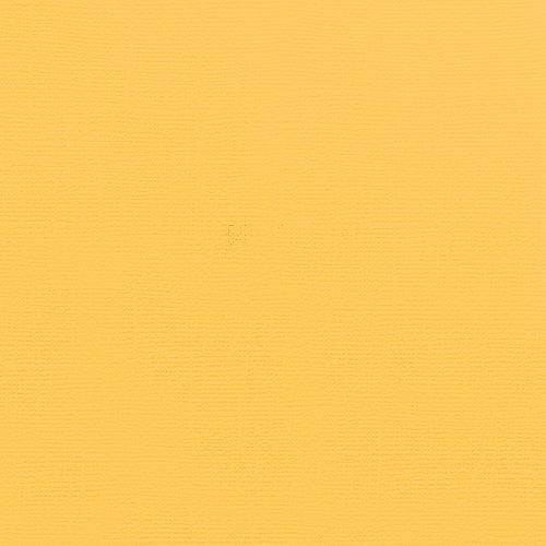 Doodlebug Design - 12 x 12 Textured Cardstock - Bumblebee