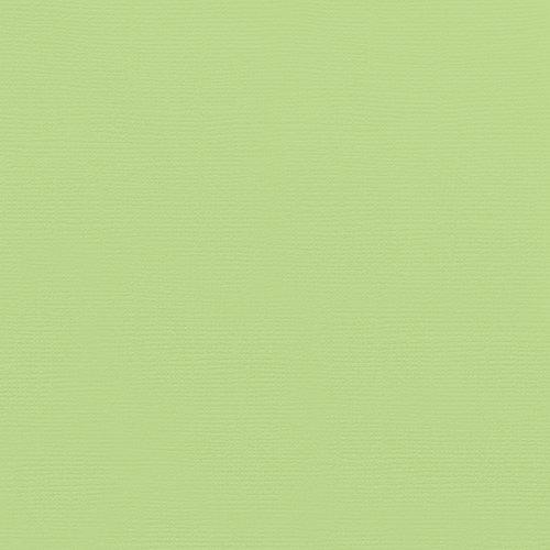 Doodlebug Design - 12 x 12 Textured Cardstock - Limeade