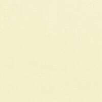 Doodlebug Design - 12 x 12 Textured Cardstock - Almond