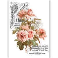 Dress My Craft - Transfer Me - Peach Roses