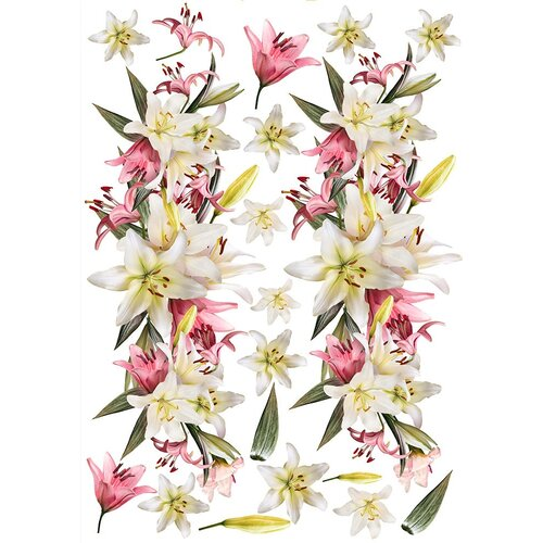 Dress My Craft - Transfer Me - Exotic Lilies