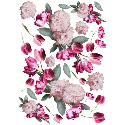Dress My Craft - Transfer Me - Tulip Fantasy