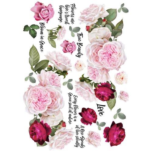 Dress My Craft - Transfer Me - Blossom Flowers