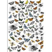 Dress My Craft - Transfer Me - Mini Vintage Butterflies