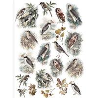 Dress My Craft - Transfer Me - Vintage Birds