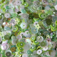 Dress My Craft - Sequins - Kiwi Mix