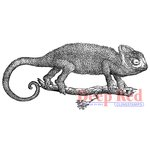 Deep Red Stamps - Cling Mounted Rubber Stamp - Chameleon
