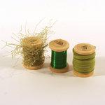Deja Views - C-Thru - Art-C Collection - Twist and Tie Set - Green