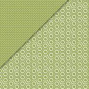 Deja Views - C-Thru - Little Yellow Bicycle - Traveler Collection - 12 x 12 Double Sided Paper - Green Hexagon