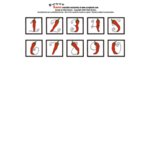 E-Cuts Numbers (Download and Print)  - Salsa